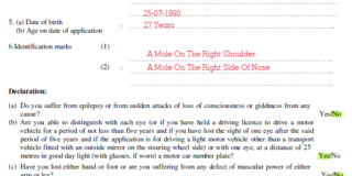 Driving Licence Form 1 Sample